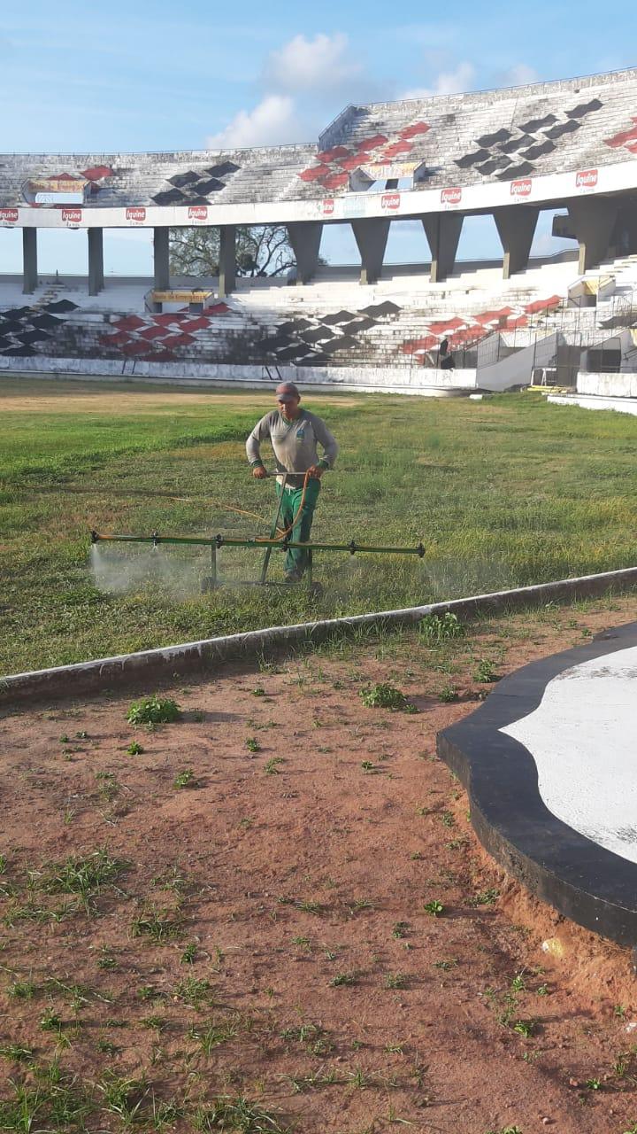 Obra para troca total do gramado já começou