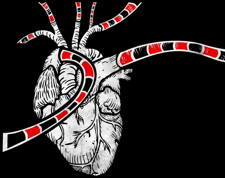 Coração Batendo